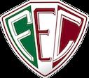 Escudo Fluminense-PI