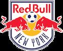 Escudo New York RB