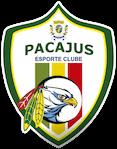 Escudo Pacajus