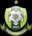 Escudo Paragominas