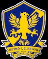 Escudo Retrô FC