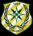 Escudo Samambaia