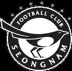 Escudo Seongnam