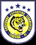 Escudo Tiradentes-PI